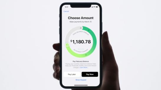 apple cardの支払い調整画面。一瞬でその月の支払い金額を調整できる