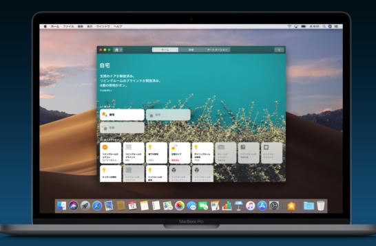 macOS Mojave上でのiOSアプリ起動画面